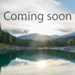 Coming soon Bild