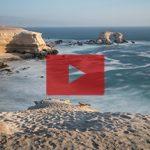 Playbutton-Chile