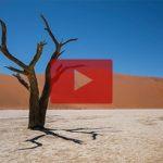 Playbutton Namibia