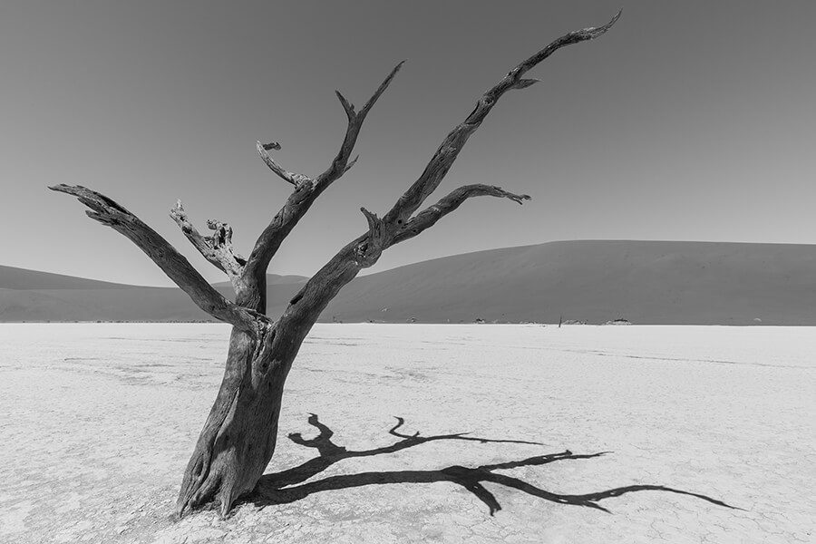 Deadvlei black and white